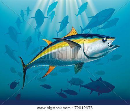 Shoal of yellowfin tuna in deep water. Raster illustration.