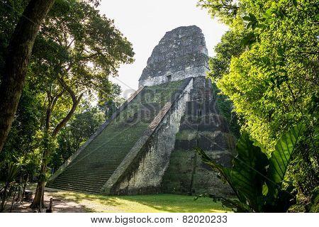 Postal Mayan Ruins At Tikal, National Park. Traveling Guatemala, Central America.