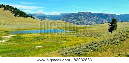Blacktail Plateau In Yellowstone National Park, Wyoming In Summer