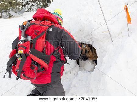 Mountain Rescue Service