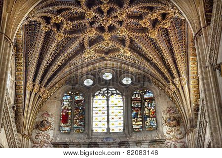 Stone Arch Stained Glass Statues New Salamanca Cathedral Spain