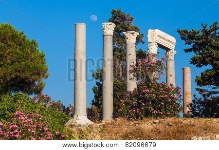 Ancient roman columns in Byblos Lebanon