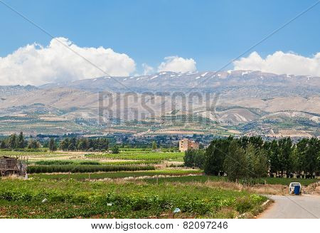 Beqaa (Bekaa) Valley Baalbeck Lebanon