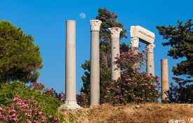 Ancient roman columns in Byblos Lebanon