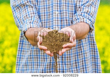 Male Farmer Examines Soil Quality on Fertile Oilseed Rapeseed Agricultural Farm Land poster