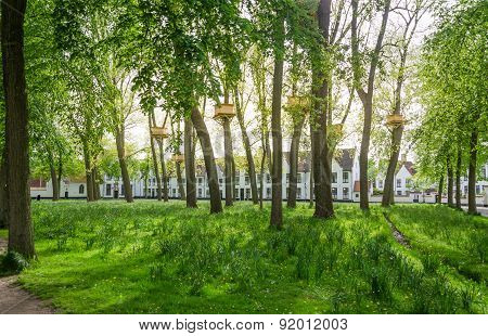 Tree Houses In The Beguinage Garden In Bruges