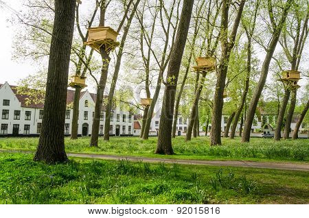 Tree Houses In The Beguinage Garden, Bruges