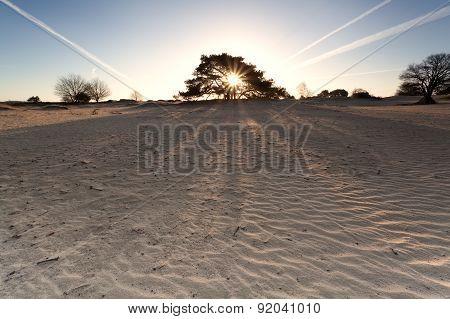 Sunrise On Sand Dunes