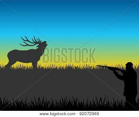 Hunt on deer