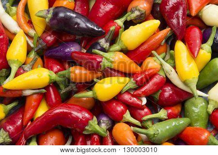 Hot Peppers In Wok Pan