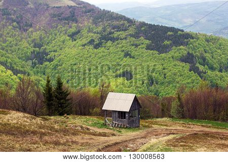 landscape consisting of a valley with little wooden house on the foreground and Carpathians mountains with fir-trees and green trees on the background