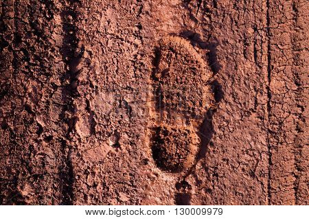 The imprint of the shoe on the muddy dirt road