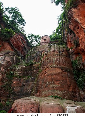 The 71m tall Giant Buddha (Dafo) carved out of the mountain in the 8th century CE in Leshan Sichuan province China poster