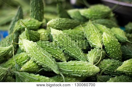 Close up Green Momordica Charantia for cooking