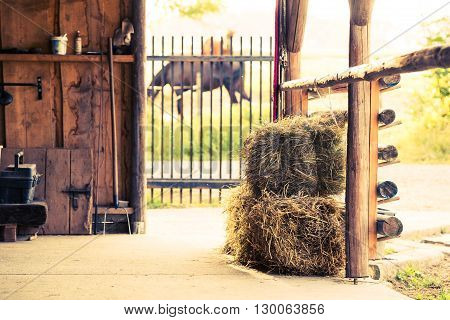 Stable Hay Cubes. Stud Farm Horse Feeding Place.