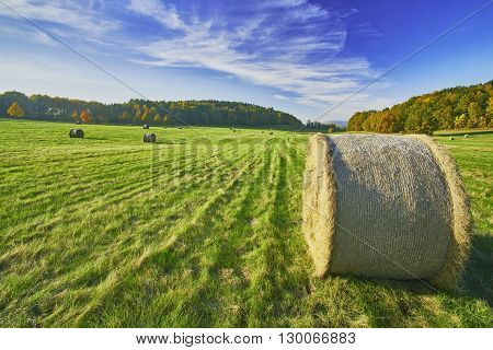View of the autumn landscape with silage in meadow