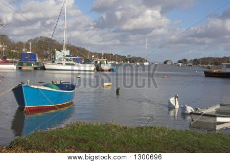 River View With Boats & Swans