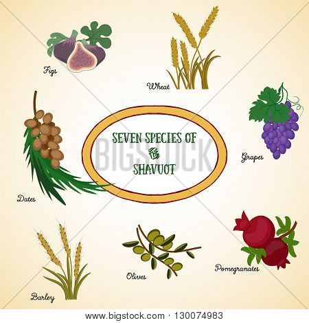 Seven species of the Shavuot agricultural products - two grains and five fruits which are traditionally eaten on Jewish holiday Shavuot. Vector illustration EPS 10