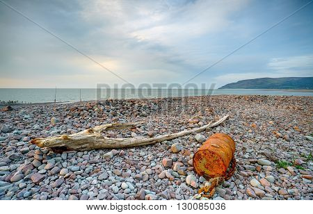 Flotsam And Jetsam On The Shore