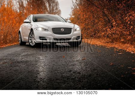 Saratov, Russia - October 16, 2014: Whtie luxury car stay on wet asphalt road at autumn
