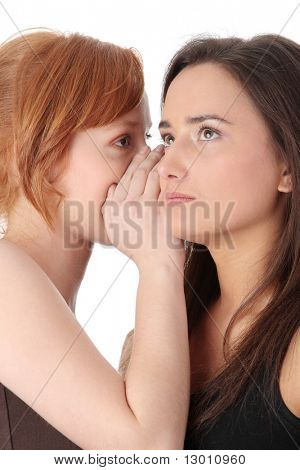 Two young womans talking gossip isolated on white background