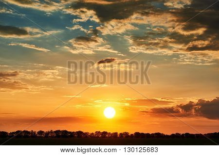 sunset, bright colorful sky and clouds as background, tree silhouette