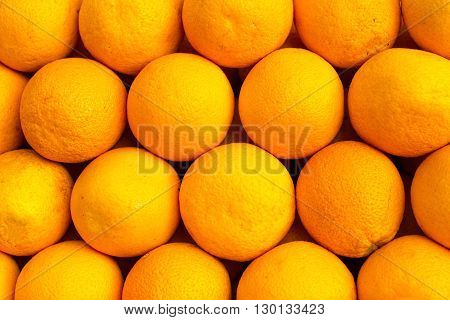 The oranges are beautifully and evenly laid out in lines under the sun. The beautiful background.