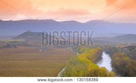 Vineyards In La Rioja, Spain..