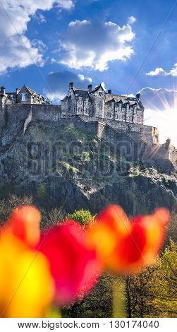 Edinburgh Castle With Spring Tulips In Scotland
