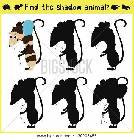 Children's developing game to find an appropriate shadow animal of the opossum. Vector illustration