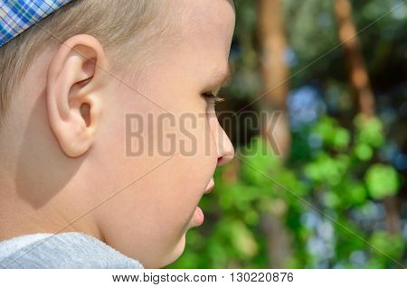 Face of a little boy on a background of trees
