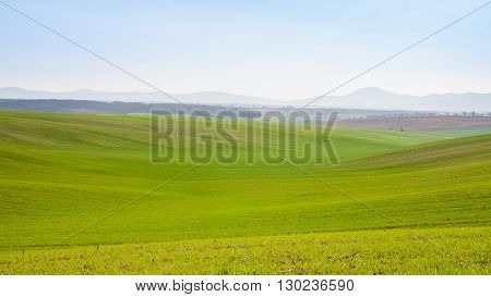 Green cultivated field with valley and hills in the distance
