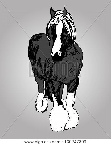 Graphic image of a large horse. Purebred heavy horse hairy feet. The horse print on grey background. Abstraction vector illustration