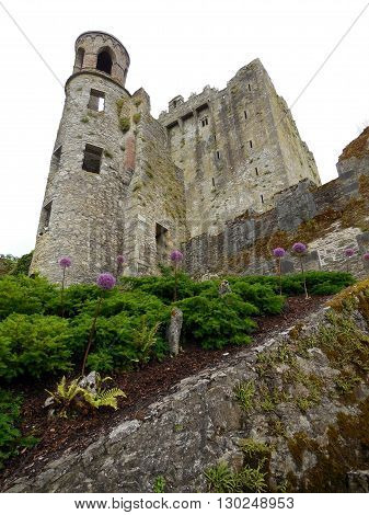 Blarney castle in Ireland is known for its prowess and infamous stone which touts good luck if kissed.