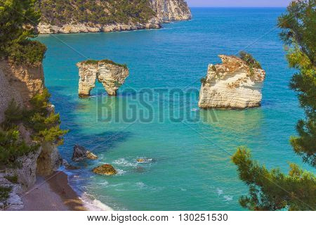The most beautiful coasts of Italy:Baia dei Mergoli beach (Apulia).The beaches offer a breathtaking view with brigthly white karstic cliffs,emerald-blue sea,lush greenery of olive-trees,pine-woods.