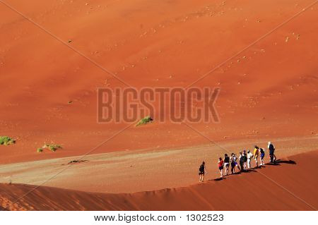 Desert Hikers