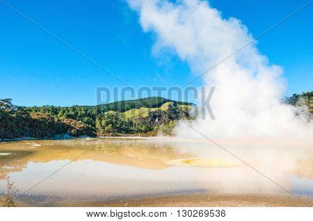Oyster Pool, Wai-o-tapu Geothermal Wonders, Waiotapu, Waikato, New Zealand