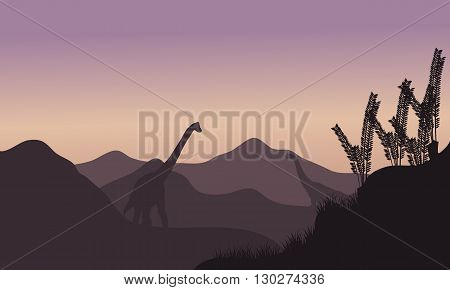 Silhouette of two brachiosaurus in fields at the morning