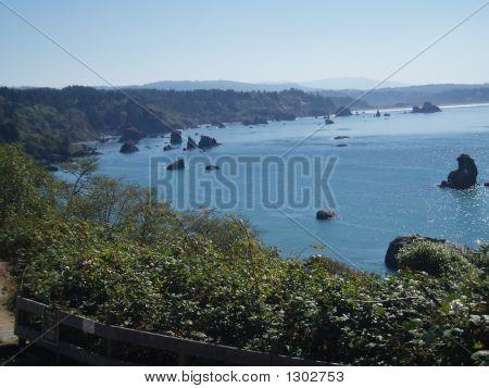 Ocean At Trinidad