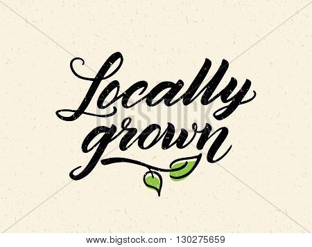 Locally grown hand drawn brush lettering against recycled paper background. Logo, badge template for healthy food markets and stores. Texture elements can be easily removed.