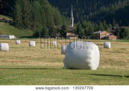 harvested fodder balls in switzerland panorama landscape