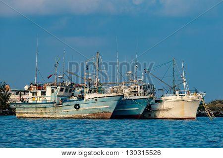 Maldivian Fishing Boat In Male