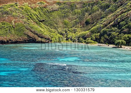 Hawaii Oahu Hanauma Bay View