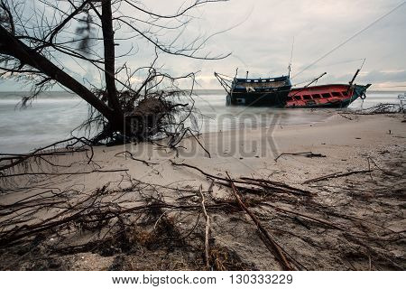 Abandoned boat and dead tree on the beach after storm