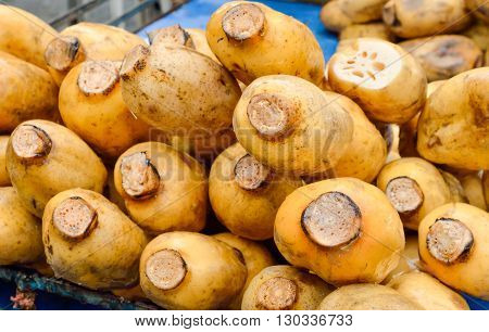 Selective focus of lotus roots sale at a street market in Thailand