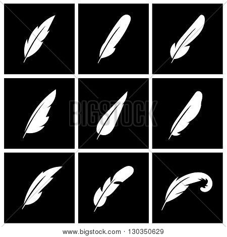 Vector feather on black background. Feather bird logo, writing feather, allegory feather sign illustration