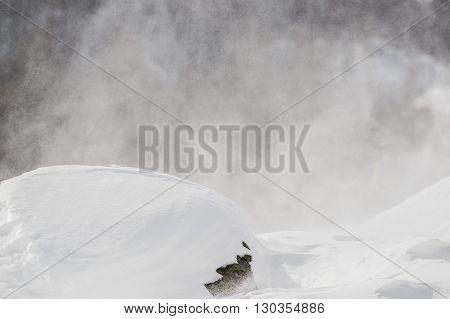 snow tempest on white mountains  detail close
