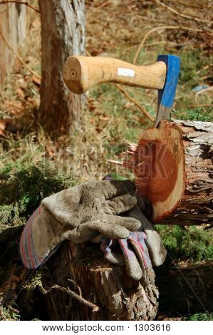 Blue Axe In Tree With Workman Gloves