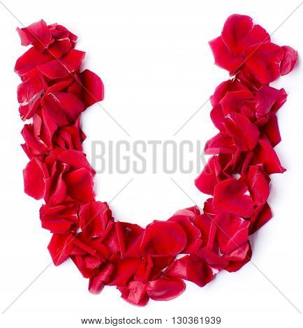 Alphabet U Made From Red Rose