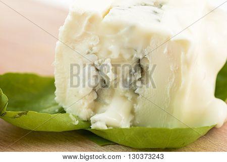 gorgonzola macro on salad leaves on wood